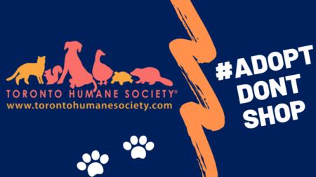 #AdoptDontShop & Toronto Humane Society