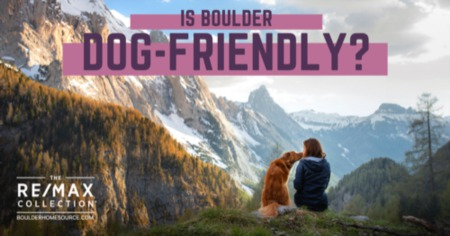 Is Boulder Dog-Friendly?: The Best Places to Take Your Dog in Boulder, CO