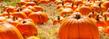 Upcoming Halloween Events Near Boulder CO
