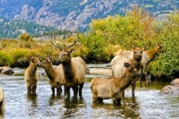 The 7 Wonders of Colorado