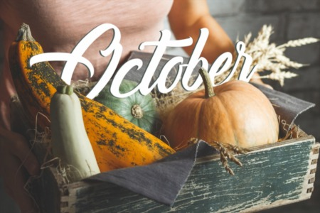 October Events in Boulder, CO