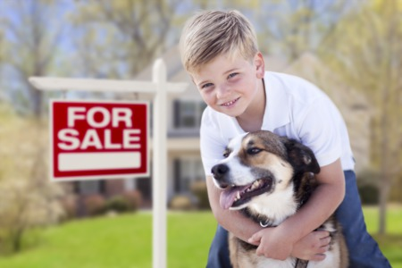 Effective Strategies For a Homeowner With a Pet to Get a Residence Ready for Sale