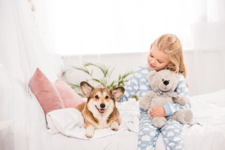 5 Interior Design Ideas For the Dog Lover