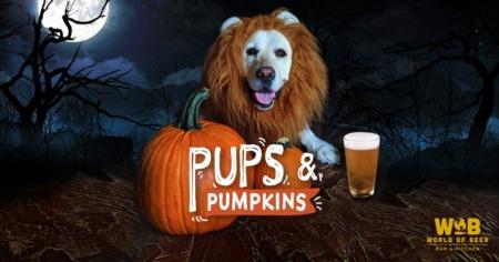 Pups & Pumpkins