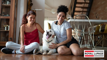 How to Remodel Your Living Space for a Pet-Friendly Home