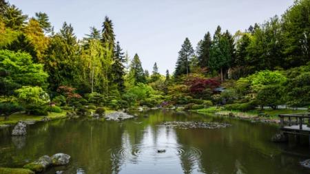 Best Art and Culture Activities in Portland, Oregon