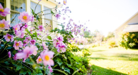 Will the Real Estate Market Bloom This Spring?