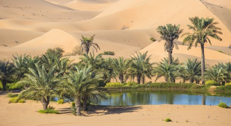 Make Your House An Oasis in an Inventory Desert
