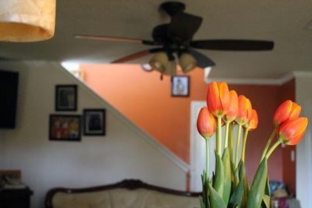 Spring-Ready DIYs Your House Needs!
