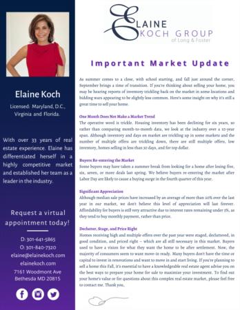 Elaine Koch September Newsletter