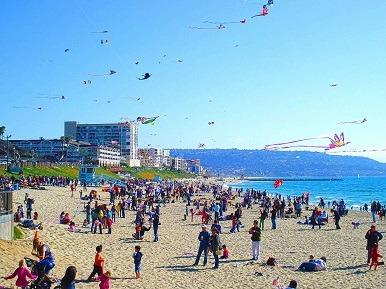 Go Fly a Kite in Redondo