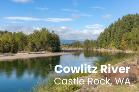 Castle Rock, WA Real Estate