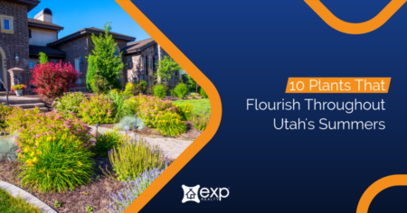 10 Plants That Flourish Throughout Utah's Summers