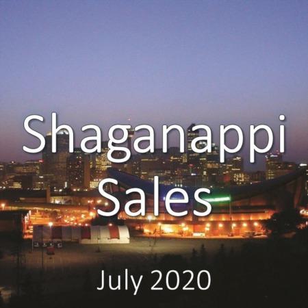 Shaganappi Housing Market Update July 2020