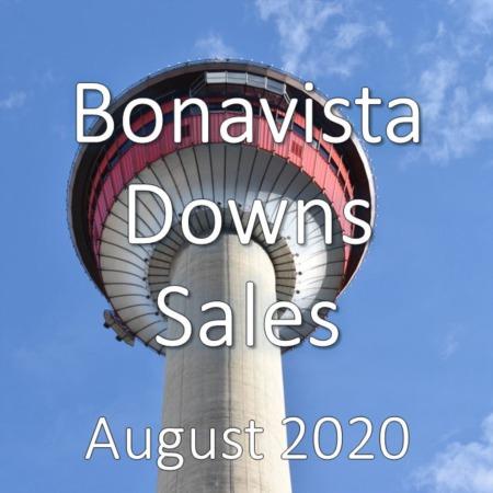 Bonavista Downs Housing Market Update August 2020