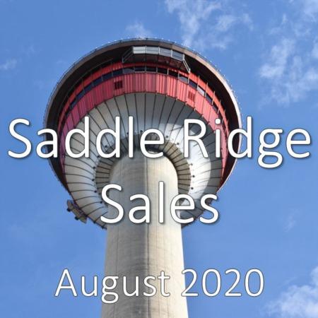 Saddle Ridge Housing Market Update August 2020