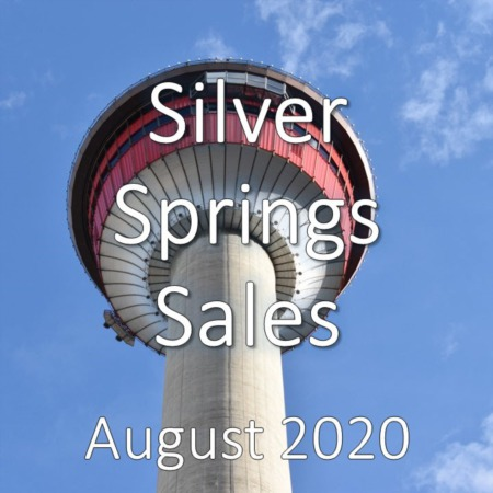 Silver Springs Housing Market Update August 2020