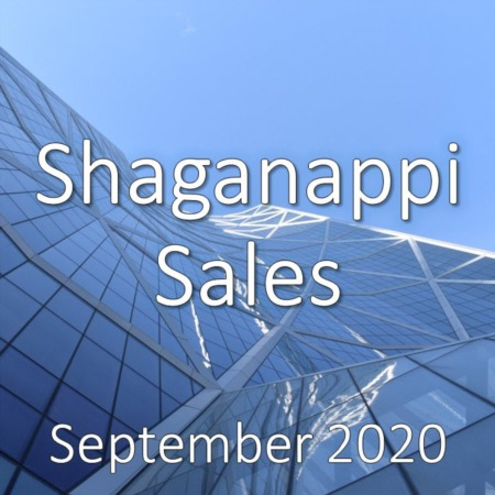 Shaganappi Housing Market Update September 2020