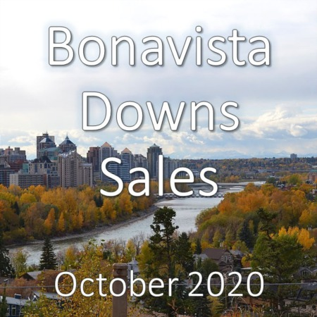 Bonavista Downs Housing Market Update October 2020