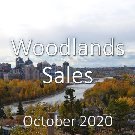 Woodlands Housing Market Update October 2020