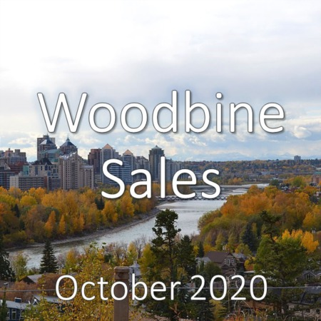 Woodbine Housing Market Update October 2020
