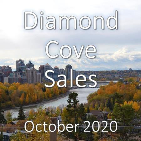 Diamond Cove Housing Market Update October 2020