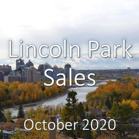 Lincoln Park Housing Market Update October 2020