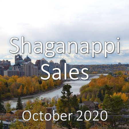Shaganappi Housing Market Update October 2020