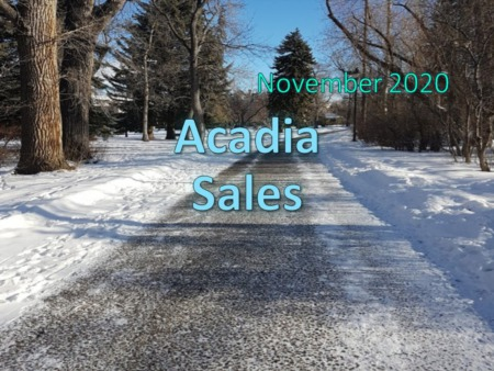 Acadia Housing Market Update November 2020