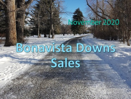 Bonavista Downs Housing Market Update November 2020