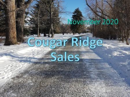 Cougar Ridge Housing Market Update November 2020