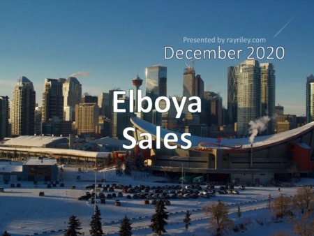 Elboya Housing Market Update December 2020