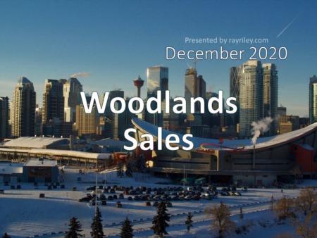 Woodlands Housing Market Update December 2020