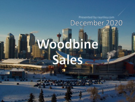 Woodbine Housing Market Update December 2020