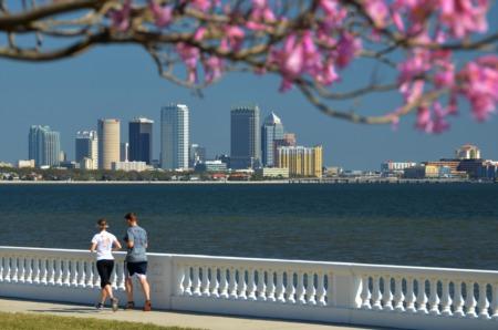 Tampa Bay Real Estate Market Trends September 2020