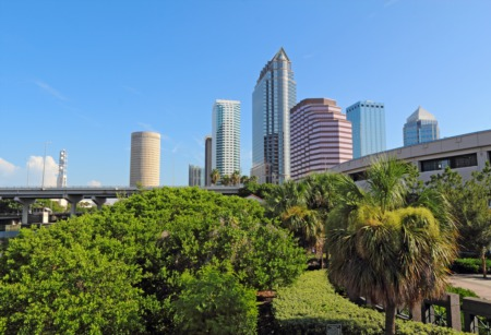 South Tampa Home Value Trends