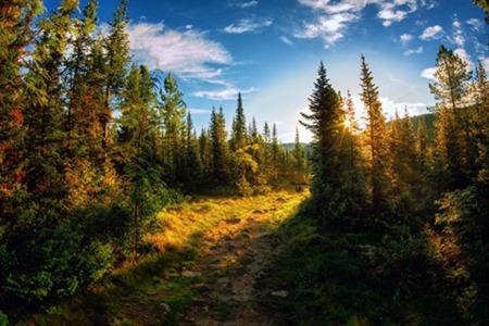 Teton Basin Ranger District Campgrounds