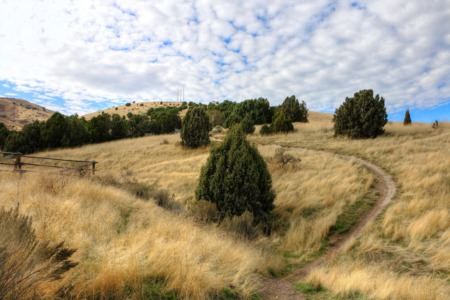 Pocatello's City Creek Management Area Trail System
