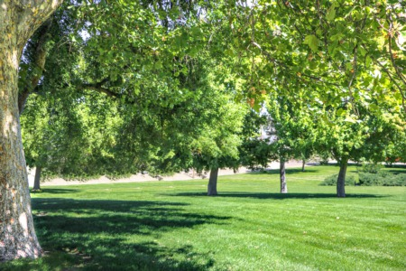 Parks of Rexburg, Idaho