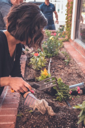 4 Things To Do To Freshen Up Your Curb Appeal