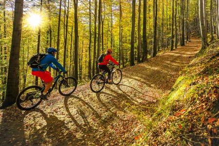 Best Bike Trails in the Milford, MI Area