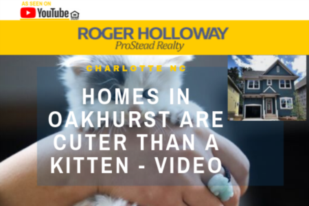 Homes in Oakhurst are Cuter Than a Kitten - Video