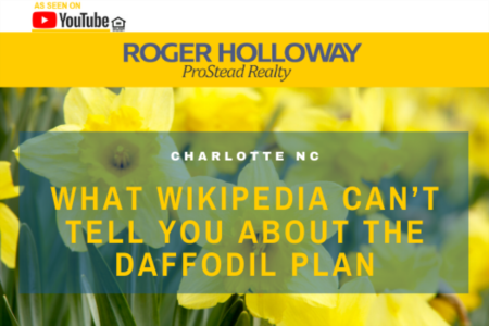 What Wikipedia Can't Tell You About the DAFFODIL Plan - Video