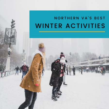 Norther Virginia 2020 Winter Activities
