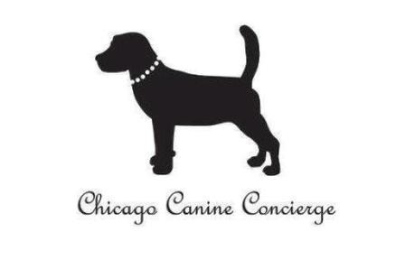 Recently Move? Contact Chicago Canine Concierge For Pet Services in Your New Chicago Neighborhood