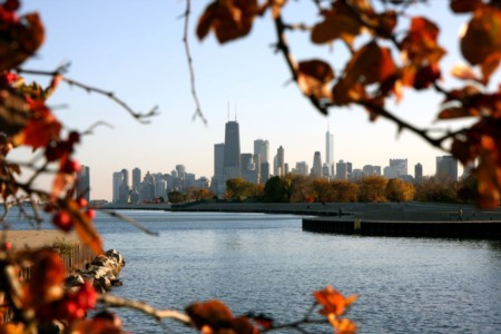 November Events in Chicago