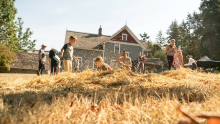 Pumpkins, Corn Mazes and Hay Bales, Oh My!