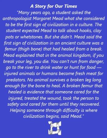 Healed Femur