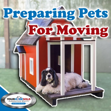 Pet Owners - Tips to Making Your Move Easier on Your Pets