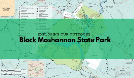 Exploring Our Outdoors: Black Moshannon State Park